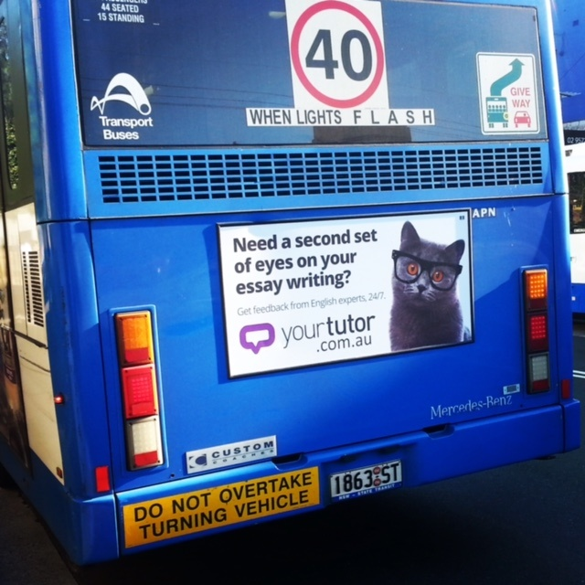 YourTutor bus ad cat with glasses - Sydney