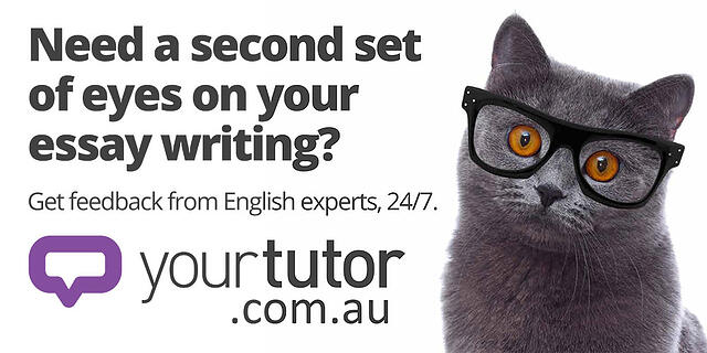 YourTutor-bus-ad-cat-with-glasses.jpg