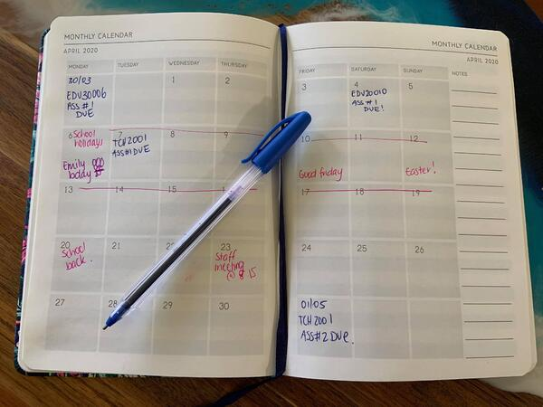 Tegans-study-diary
