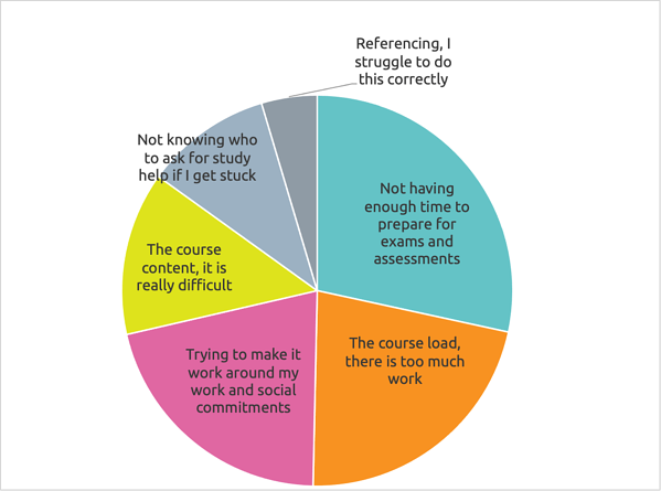 Reasons for stress pie chart